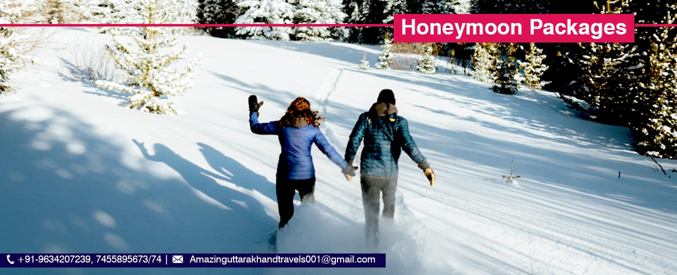 Nainital Honeymoon Package