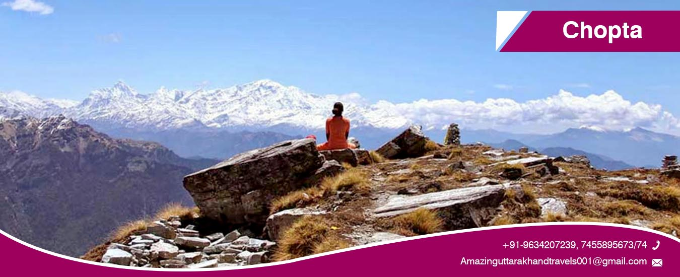 Chopta Tour Packages