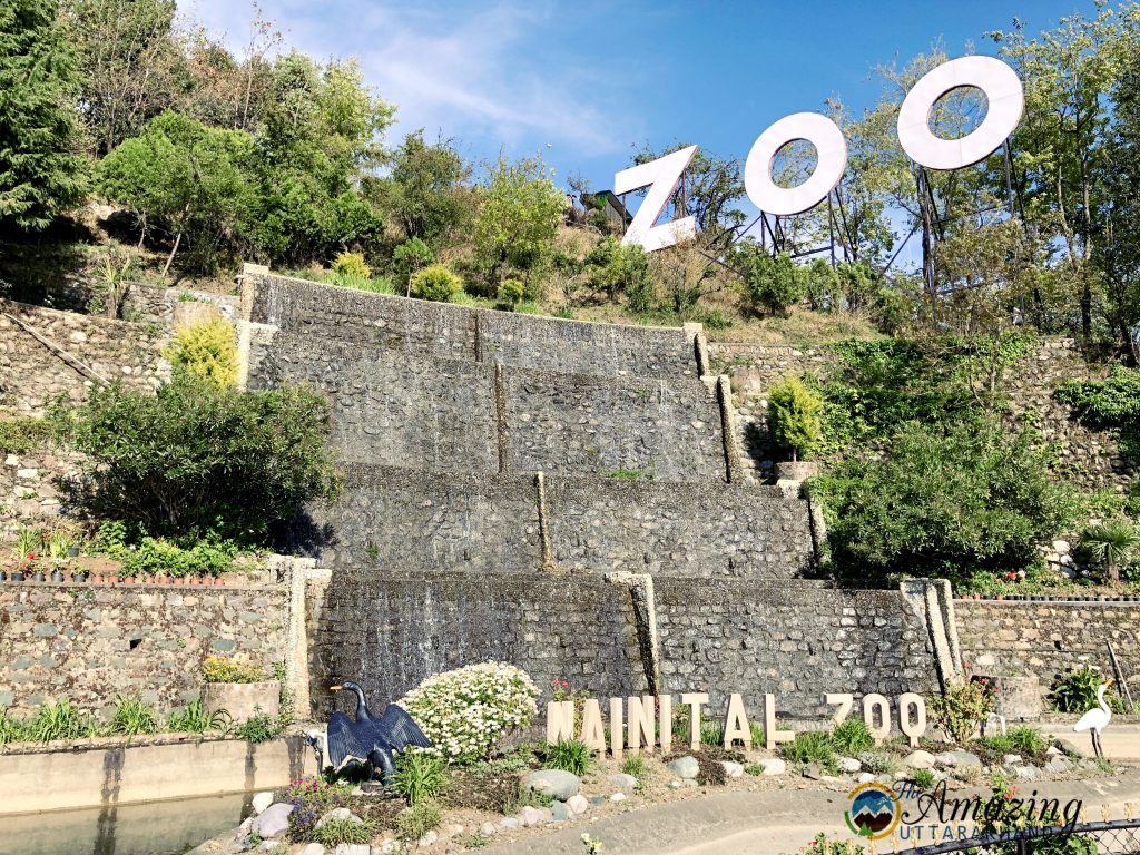 Nainital Zoo (8th Place to Visit in Nainital)